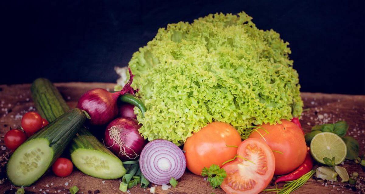 Burger Gemüse regional BIO Anbau NRW kontrolliert nachhaltig Foodtruck Catering